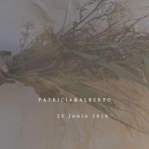 Qmirar video Boda Málaga Coín Silvia OLiveros